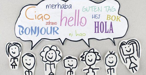 Home Language Skills Infographic